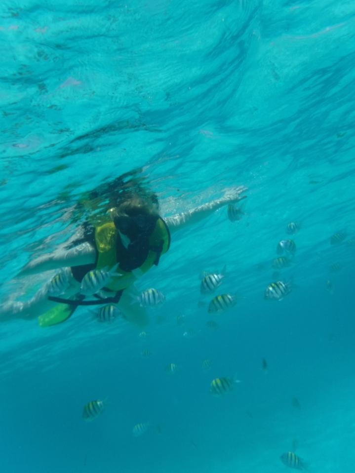 5Cancun_Mexico_Mr.Turtle and Me_Nicole BergstromJPG